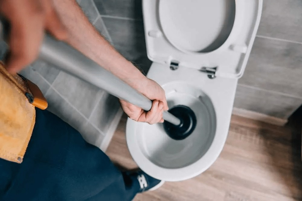 Find out the best plunger for your Kohler toilet now.